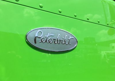 close up of emblem view green 32