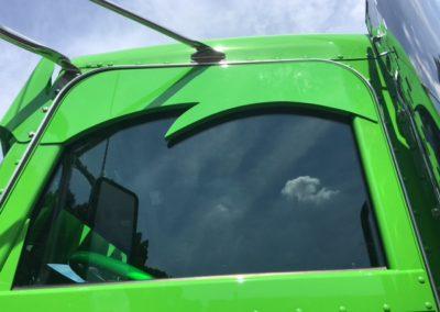 drivers window view green 10